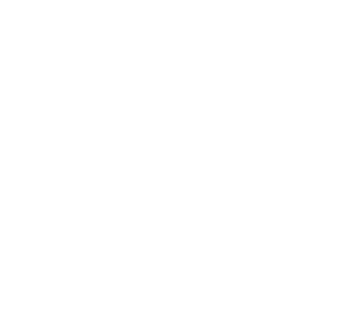 Vivid-Vision